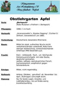 Tafel_Apfel_Berlepsch