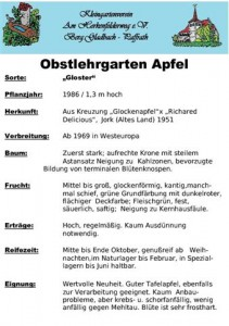 Tafel_Apfel_Gloster